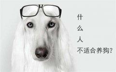 什么人不适合养狗